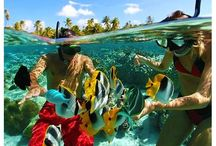 Magical Bahamas / Come and explore the beautiful Bahamas, see why so many people have fallen in love with this magical destination. Save on tours and activities with NexusTours