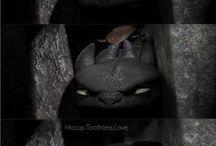 Cum să îți dresezi dragonul