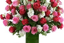 Birthday Gifts / Say Happy Birthday with one of our novel birthday arrangements! Help make someone's special day last all week with our beautiful, fresh flowers. From the uniquely colorful to the wonderfully classic, our arrangements are sure to deliver the perfect birthday surprise - try adding a balloon for extra cheer! http://www.purplerose.ca/mississauga-florist/birthday#.U1ZUa6JudH0