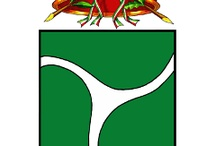Comuni in Brianza / Stemmi e simboli dei Comuni della Brianza