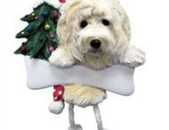 Goldendoodle / Goldendoodle pictures and gift ideas.