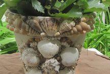 Seashell crafts & decor