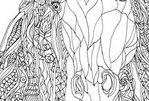 Színezők, rajzok