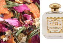 Santa Maria Novella / Santa Maria Novella, à Florence, doit certainement être un des plus beaux magasins du monde.  C'est aussi sûrement l'une des parfumeries les plus anciennes. Elle a été fondée par les moines dominicains dans les années 1120, et n'a pas beaucoup changé depuis.   Aujourd'hui Senteurs d'Ailleurs est très fier de vous présenter 5 nouvelles fragrances Santa Maria Novella.  Nous vous proposons donc 27 colognes et parfums de la maison Florentine!  Des parfums incroyables, raffinés et naturels…