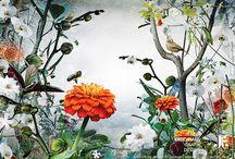Digital Botanics