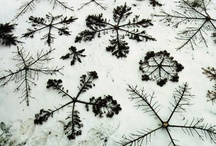 Snowflakes / None