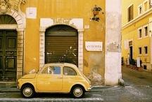 groc*