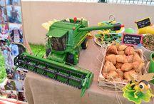 Sarper's Birthday Party (Farm Concept)