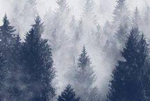 Foggy and mist