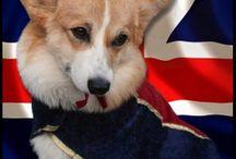 British! / All things British