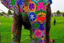 Elefánt ♡