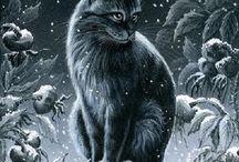 Cats!!! / Diferentes fotografias dibujos ect...de gatos