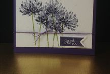 Stampin up too kind / Examples of projects using the stampset from Stampinp