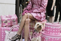 ** BARBIE LIFE ** / Imagine being Barbie and how pink and perfect life would be!!