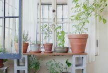 outdoors / balcony