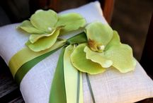 Apple green and navy / by Ashlee Clark Thompson
