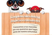 Universo Mascotas / Universomascotas is a reputed pet health brand catering to various needs of your little furry animal giving it the right healthcare needed for the animal to live a happy and healthy life.