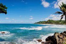 Caribbean vakantie / Het Caribisch gebied is een zeegebied met talrijke eilanden, het Caribisch gebied ligt ten oosten van Midden-Amerika of ten zuiden van Florida. Een vakantie in de Caribbean is populair bij vakantiegangers van over de hele wereld.  De populariteit komt voort uit de combinatie van verbluffend mooie stranden, weelderig groen, mooie hotels en vriendelijke mensen.