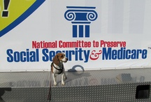 Political Pooches / by National Committee to Preserve Social Security & Medicare