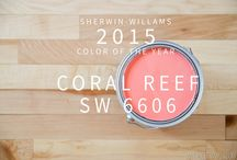 2015 color of the year / by Luella Smith