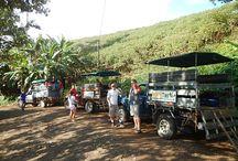Canyoning en Costa Rica #Rapel #AventuraExtrema / Uno de nuestros Tours del Paquete Costa Rica Aventura Extrema el #Canyoning o #Rapel