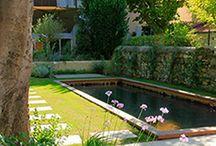 Les piscines écologiques O2Pool / Des piscines à bassin en bois massif immergé