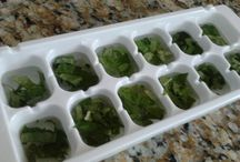 preserving herbs for winter
