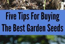 Favorite Gardening Tips