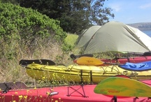 Backcountry & Boat-in Camping / by Point Reyes National Seashore Association (PRNSA)
