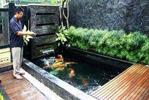 Outdoor Garden Koi Pond