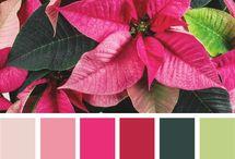 Paleta de colores / by DelacocinadeAna
