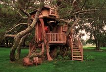 __T__ cool treehouses__T__ / Photos of some cool and interesting tree houses.