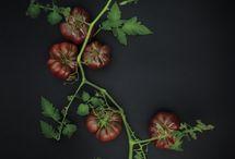 Organic and Heirloom vegetables