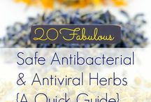 Herbs & Herbal Remedies / Herbs to help you look & feel your best - naturally