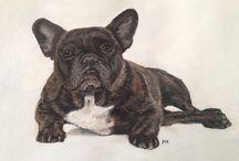 Franse bulldog / Gemaakt met pastelkrijt