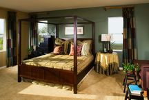 Decorating Ideas / by Susan Lowman