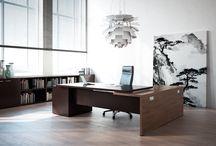 EXECUTIVE AREA / #executive #office #officefurniture