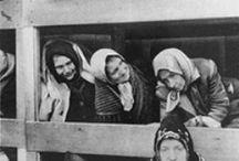 World War II / by NMU Archives