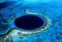 Blue deep sea  / Mi hogar , el mar .