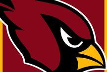 St. Louis Cardinals / by Nancy Goetten