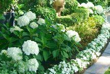 4. Garden ♥