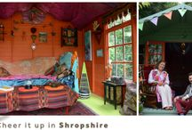 sheds / sheds