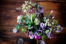 sammie's wedding flowers / by Sheridan Costa