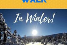Hiking Adventures in Sweden / hiking adventures in sweden, hiking trails in sweden, hiking paths in sweden, hiking places in sweden, best day hikes in sweden, hiking in sweden winter, sweden hiking trails, sweden hiking trips