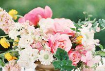 Dream wedding / by Jensyn Pence