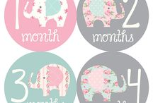 baby - months