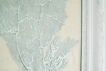 Coastal Decorating Ideas / This board captures the timeless designs inspired by coastal waters.