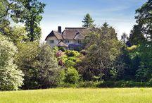 Devon thatched cottages