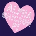 "Alpha Omicron Pi / ""Women Enriched through Lifelong Friendship""  Alpha Omicron Pi Spirit Jerseys, bid day sweatshirts, recruitment shirts, screenprinting ideas, AOII Pocket Tanks, custom greek apparel for Alpha Omicron Pi, and so much more!  http://www.explosionsportswear.com/artwork.php?searchHouses=11"
