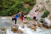 Rishikesh Yoga Teacher Training  / Chandra Yoga International Is approved by Yoga Alliance USA. Chandra Yoga Provides 200 Hour / 500 Hour yoga teacher training in Rishikesh, India.
